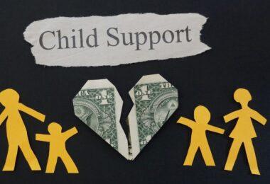 childsupport-francisking
